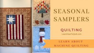 Seasonal Sampler Machine Quilting the FRAME