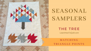 Seasonal Sampler - Matching Triangle Points